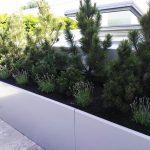 Pflanzeneinfassung